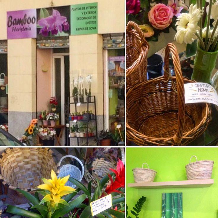 @cestashome en Bamboo Flores. Ahora también puedes comprar #unacestadecestashome en Bamboo Flores, c/. Fray Luis de León, 8 (Madrid). Mayca te atenderá con simpatía y te orientará para elegir #plantas, #flores y #cestas. Acertarás seguro! Más info: https://www.cestashome.com. ENLACE EN EL PERFIL. #cestasartesanales #cestasdecalidad #handmadebaskets #cestasyflores #bambooflores #calidadcestasdeespaña