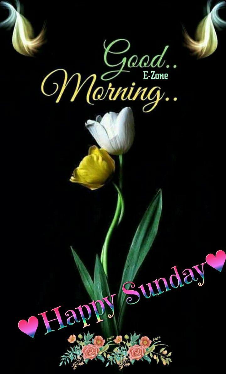 Good Morning Happy Sunday Greetings Monday Greetings Good