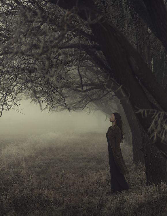 35PHOTO - Давид Д - туман