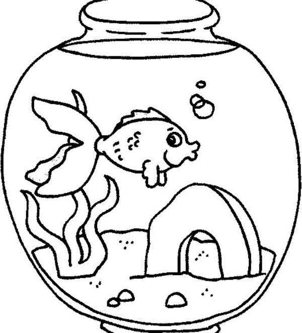 2c011d85e06489c2d38a6817384ca834 » Goldfish In Tank Coloring Pages