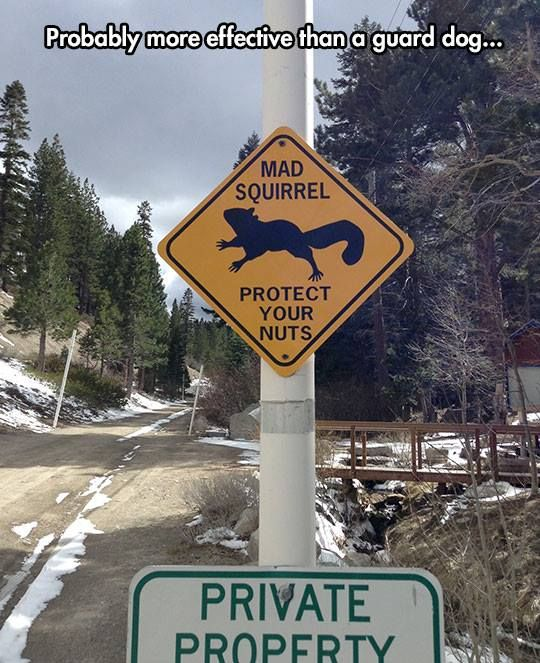 Funny road signs - http://jokideo.com/funny-road-signs/