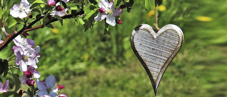 Creating a Unique Memory Garden