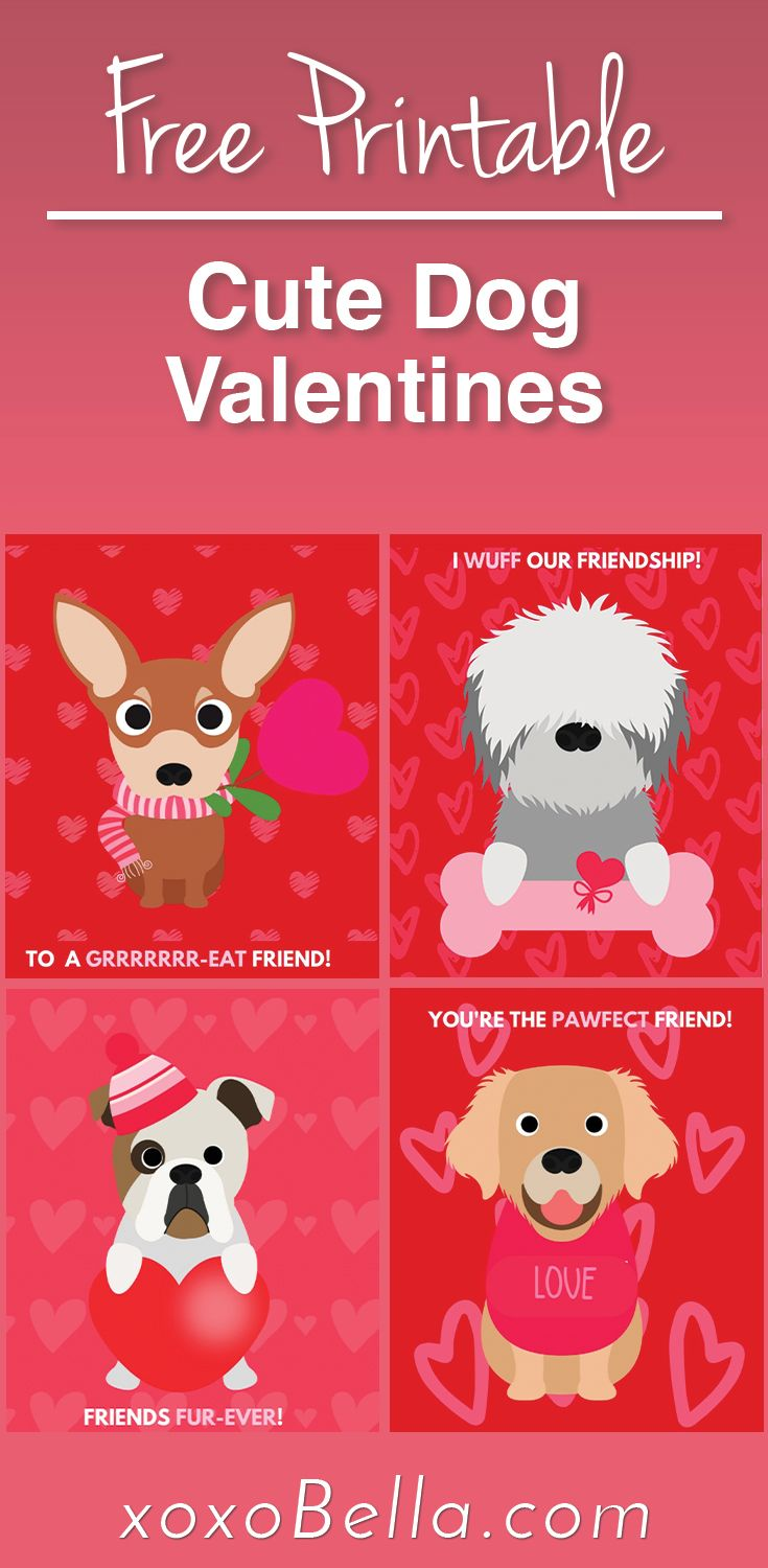 Dog Valentine S Day Cards Free Printable In 2021 Puppy Valentines Dog Valentines Valentines School