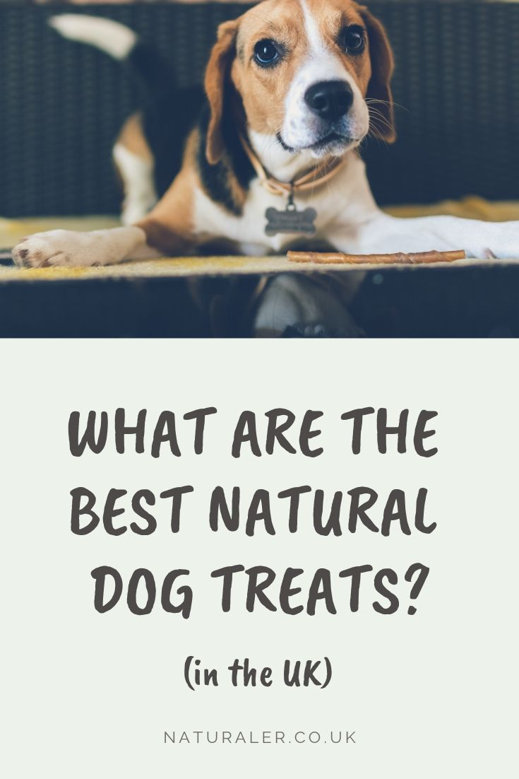Best Natural Dog Chews Treats In The Uk Natural Dog Natural Dog Treats Natural Dog Chews
