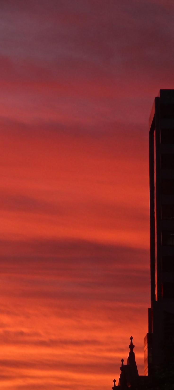 Red Sky at Night~  #sydney #sunset #orange