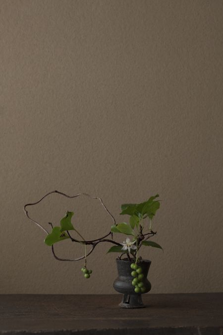 Matsubusazuru and yamajinohototogisu in an ancient earthenware pot. Toshiro Kawase 花=松房蔓(マツブサヅル)、山路の杜鵑草(ヤマジノホトトギス) 器=新羅土器高杯(新羅時代) 一日一花 川瀬敏郎
