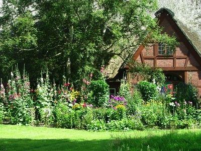 Top 17 Idei Despre Blumenwiese Anlegen Pe Pinterest | Oleander ... Blumenwiese Anlegen Garten