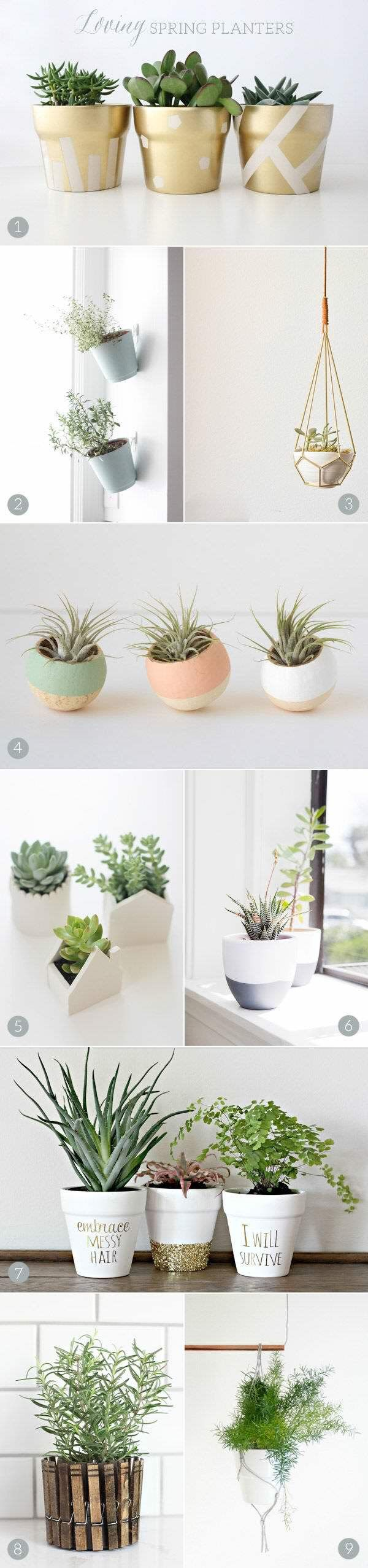 Plant holder - side of cabinet succulents or herbs in small planters