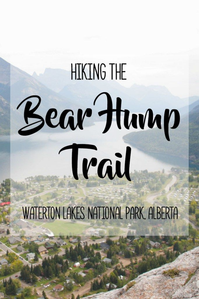Hiking the Bear Hump Trail in Waterton Lakes National Park | Heading to Alberta's Waterton Lakes National Park and looking for a challenge? The Bear Hump Trail is an easily accessible and short but strenuous uphill hike leading to a look-out area with stunning views overlooking the town of Waterton, surrounding lakes, mountains and forested valleys. The views are well worth the steep climb! Check out my blog post for more information and photo inspiration!