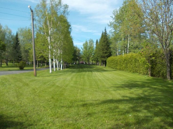 Large lawn and 1.289 acre lot.  All details at Snap Up Real Estate - https://www.snapuprealestate.ca/listing/Saint-Jacques-NB/house-for-sale-1580-Baisley-Rd--Saint-Jacques--NB-E7B2A7-8041408092