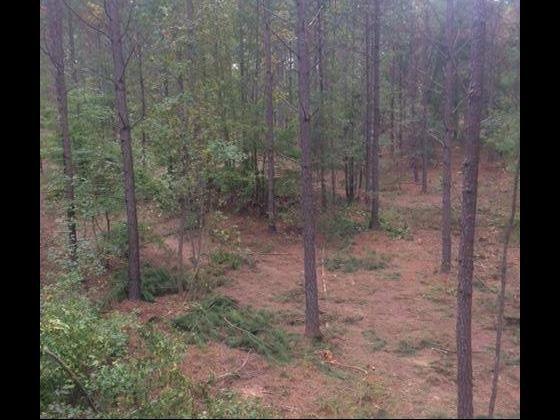 Right at 70 acres in Laurens. (two separate tax maps 558-00-00-001 and 558-00-00-008) Current owner has had for nearly 15 years.  Very well maintained property.  If you are looking for hunting property there have been some beautiful bucks taken off the farm including several huge gobblers. All stands to remain which owner believes to be around 20 with tripods to multiple 2 man buddy stands.  Owner has hosted Mobility Impaired and wounded Warrior deer hunts for the SCDNR for over 10 years…