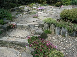 rock garden septic mound