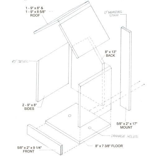 robin nest box plans