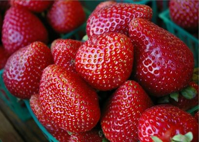 When to Plant Strawberries in Texas