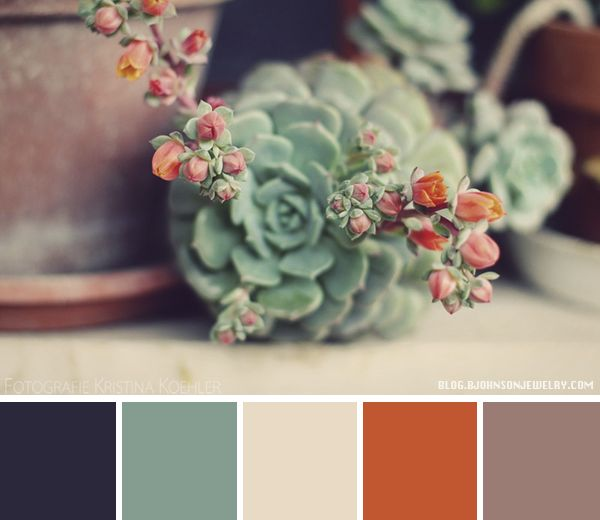 Color Palette - Blooming Cactus | Oh Everything Handmade