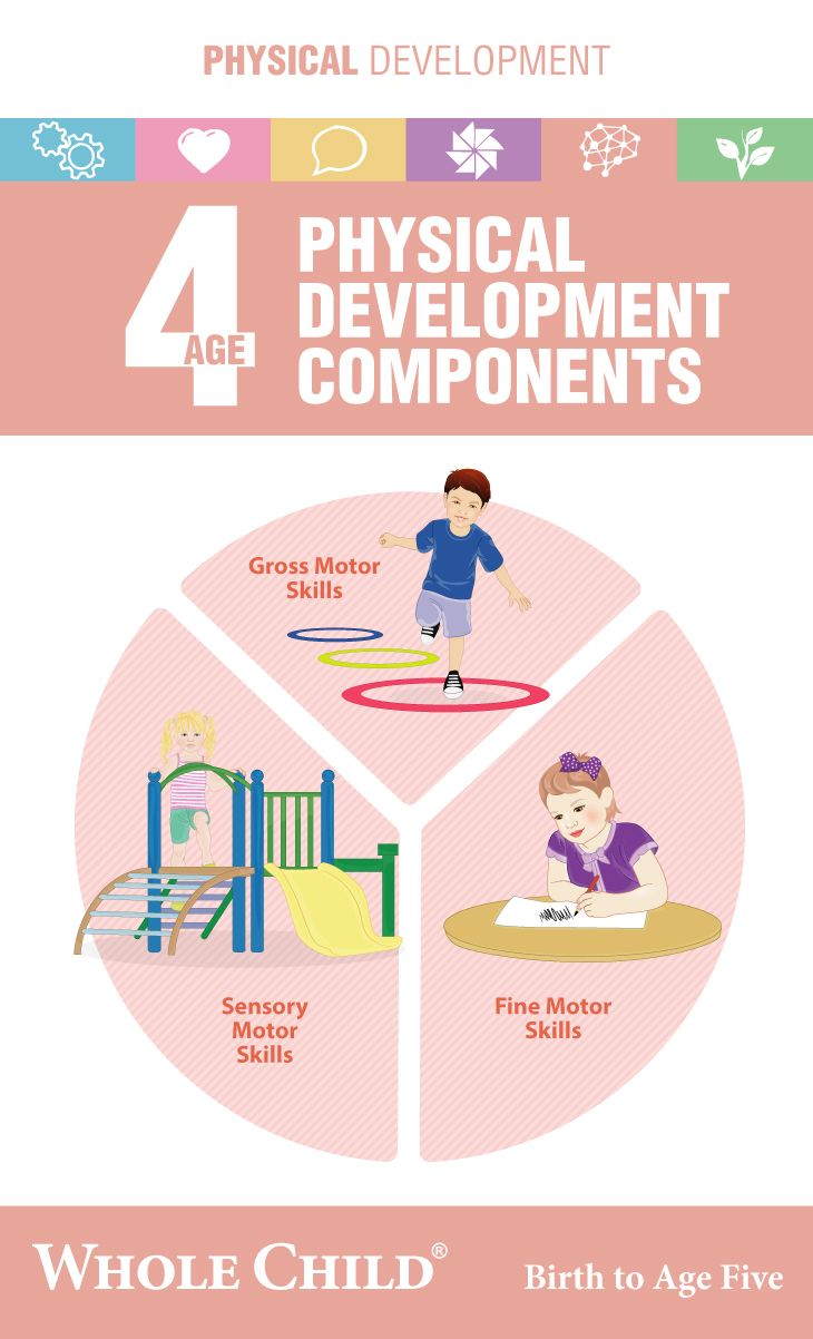 4 Years Old Physical Development Components Physical Development Parenting Skills Development