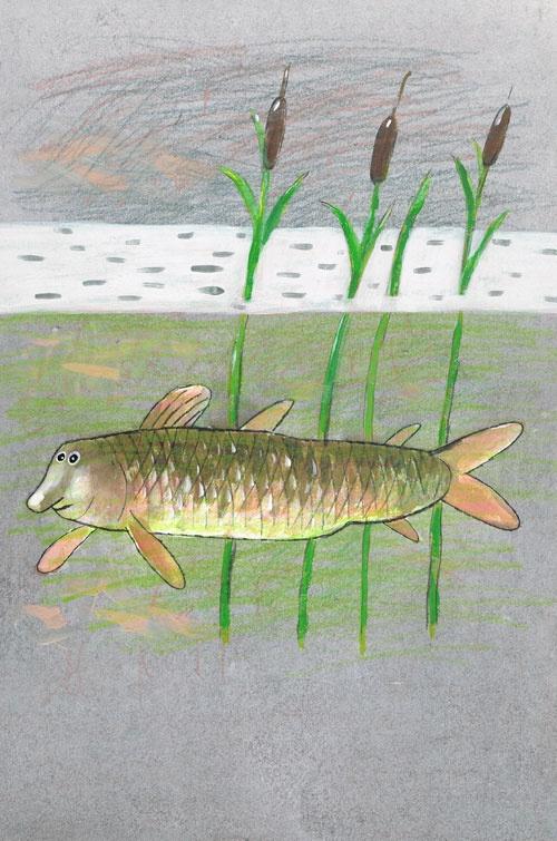 Titel: thema- Dieren rond de woning - Vis  Kunstenaar: Aleksandr Vakhrmejev  Afm.: 20 br. x 28 cm hg.   Techniek: waterverf op papier. Collectie Postersquare.