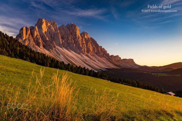 Fields of gold, Odle - Sunset on the Odle massif. The Dolomites. Region Trentino-Alto Adige. Italy. ©www.albertoperer.com