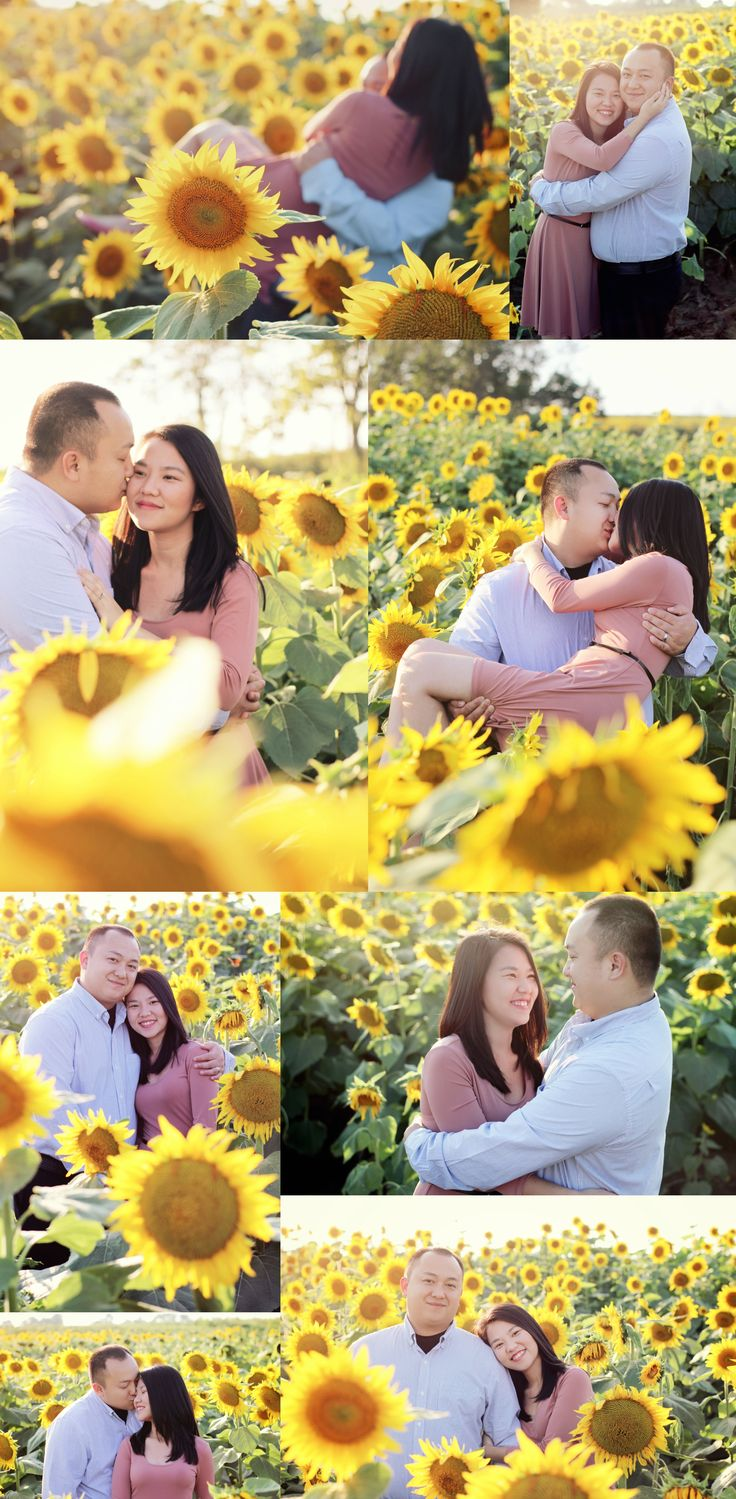 Sunflower Field Photography | Engagement photo shoot in sunflower field | lifestyle, couple photos, pink dress, love, natural poses, candid, field, golden hour |                  Audra'esque Photography » Kansas City photographer » Lawrence, KS photographer » Topeka, KS photographer