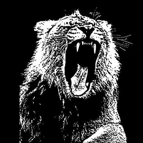 Martin Garrix- Animals