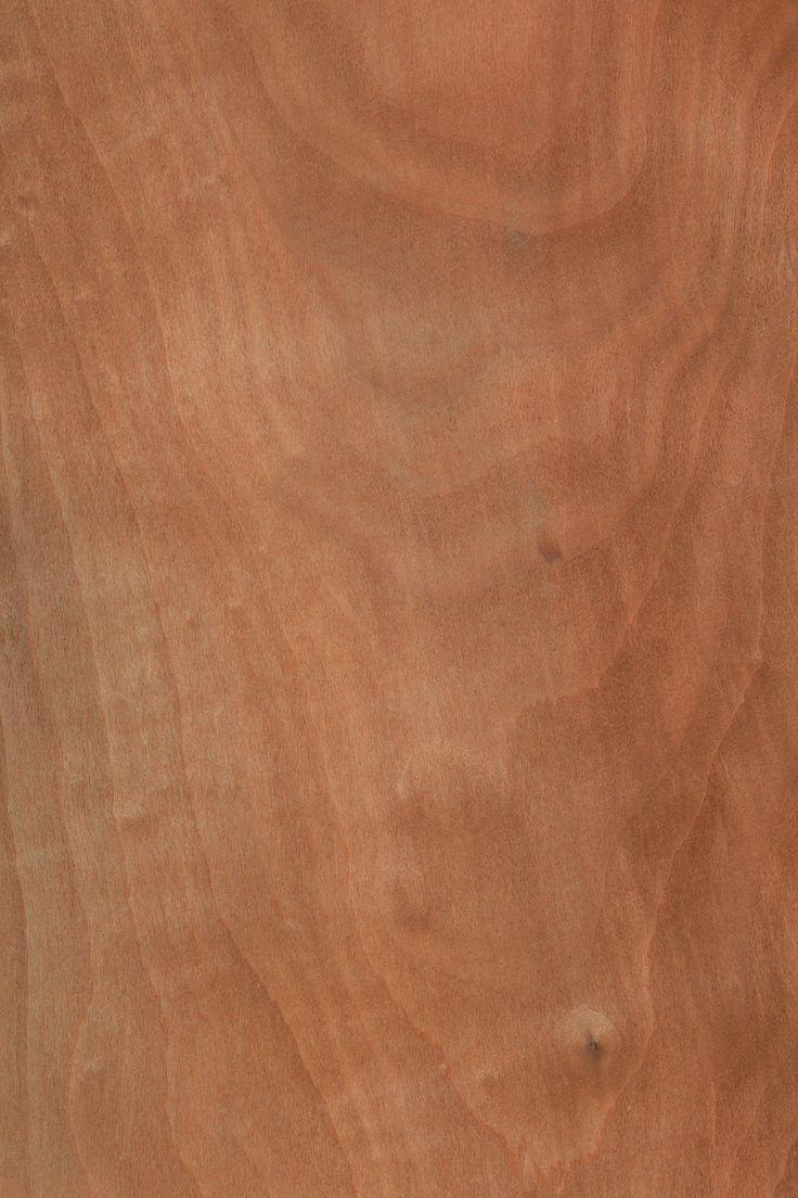 Apfelbaum | Furnier: Holzart, Apfel, Blatt, hell, braun, Laubholz #Holzarten #Furniere #Holz