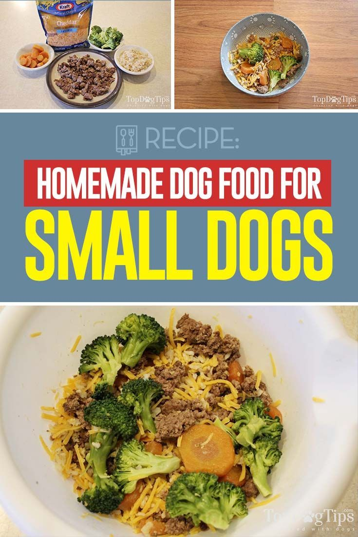 Recipe Homemade Dog Food For Small Dogs Dog Food Recipes