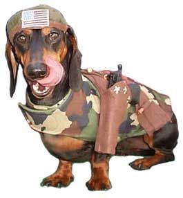 Boot camp doxie...I WAS going to use this for our PR strong theme...I hope it can still be used for PR Dynasty!