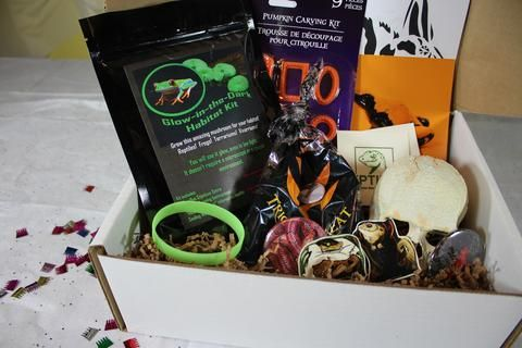 Unboxing the October Reptibox! See what goodies were included for October at the Reptibox blog.
