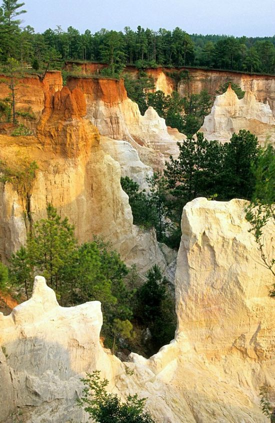 Providence Canyon State Park, Georgia. I've been here and it is a beautiful place!  You must take the hike down to the bottom!