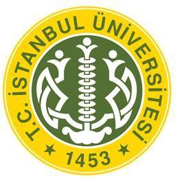 İstanbul Üniversitesi Öğretim Elemanı Alımı İlanı