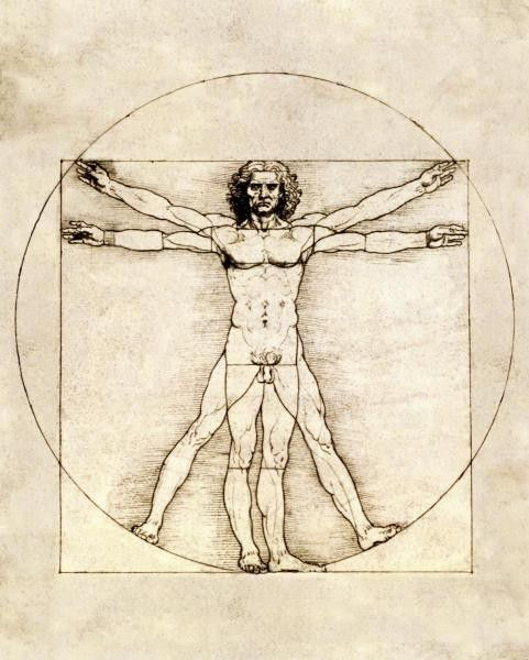 Proportions Of The Human Figure (Vitruvian Man) by Da Vinci, Leonardo - Wall Art Giclee Print or Canvas