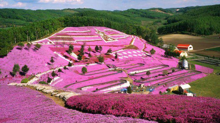 ZIUA PĂMÂNTULUI 2016. Cele mai colorate locuri de pe pământ, create de Mama Natură. Imagini WOW | REALITATEA .NET