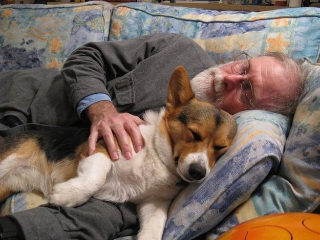 The 36 Absolute Best Things In TheWorld    #20. Sleeping with your pet.