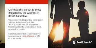Image result for scotiabank