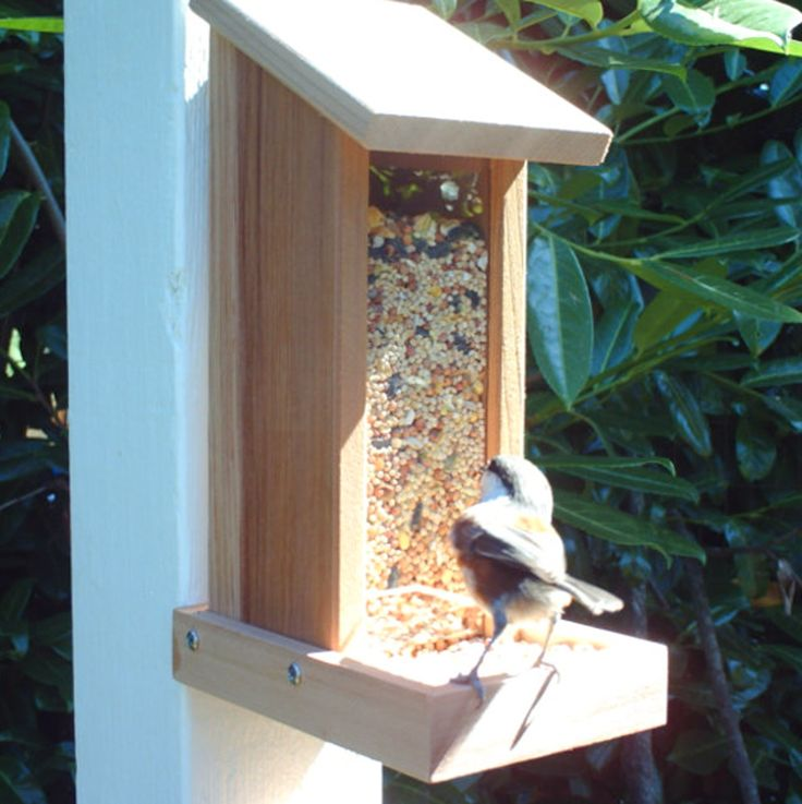 Checkout this amazing deal Wooden Bird Seed Feeder,$42