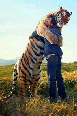 When paradise comes I will not stop until I've hugged every single animal!