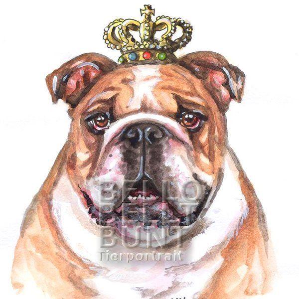 Bello Bellt Bunt Aquarell Englische Bulldogge English Bulldog Mit