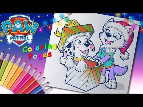 Paw Patrol Christmas Coloringpages Forkids Learncolors With Christmas Marshall Everest Youtube Paw Patrol Christmas Paw Patrol Christmas Coloring Pages