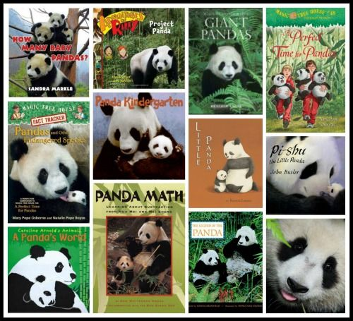 Panda facts, books, crafts, videos, and online lesson plans that help kids learn about the adorable giant pandas from China!