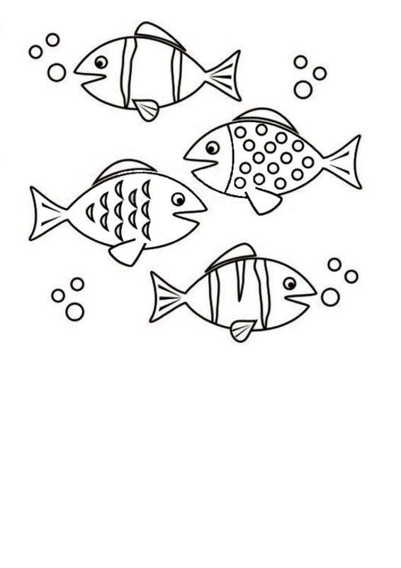 1000  images about petit poisson dans l u0026 39 eau on pinterest