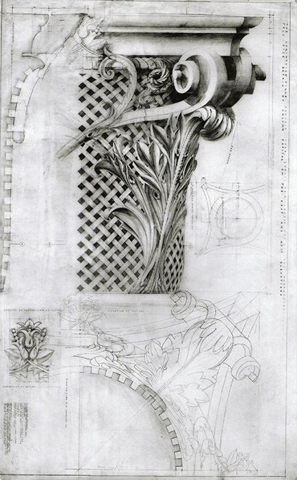 Corinthian Capital. Exhibited 2002. Drawn by Francis Terry. Pencil on tracing paper.  http://www.qftarchitects.com/drawings.php?r=1&height=665&width=1280
