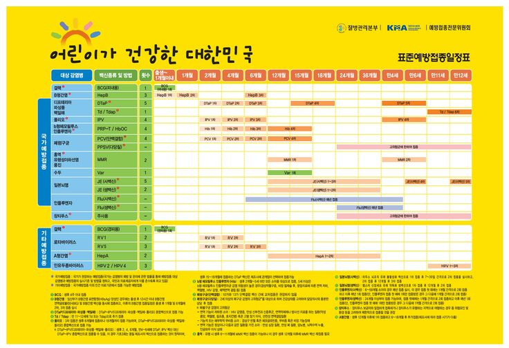 표준예방접종일정표
