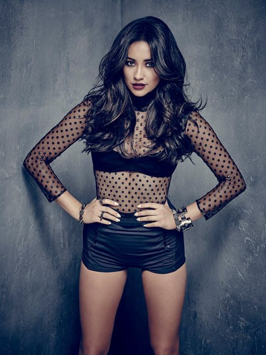 Pretty Little Shay