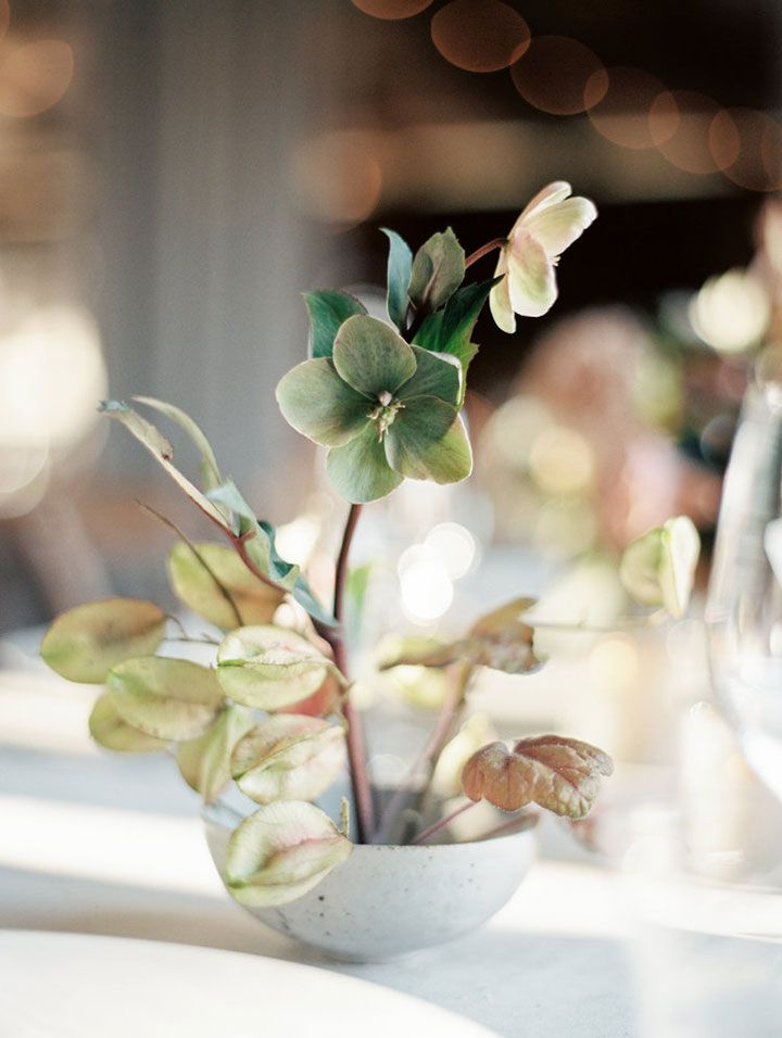 Neutral Palette For A November Wedding ~ Hellebores, simple delicate centerpiece by Studio Mondine; gorgeous capture by Taralynn Lawton