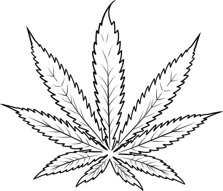 Pot Leaf Coloring Pages