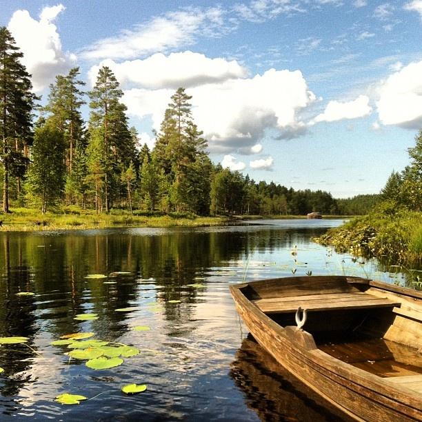 #Finnskogen #Hedmark - @neram1- #webstagram.