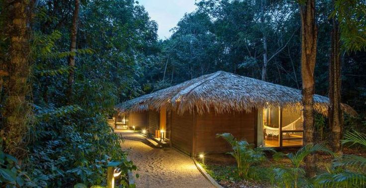 Amazonas | Brazil | South America | Anavilhanas Jungle Lodge ...