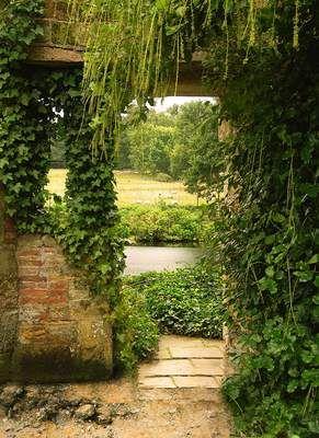 Tuinposter van Doorkijk naar weiland