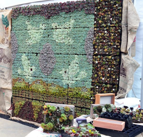 Superb Vertical Gardening Panels For Succulents