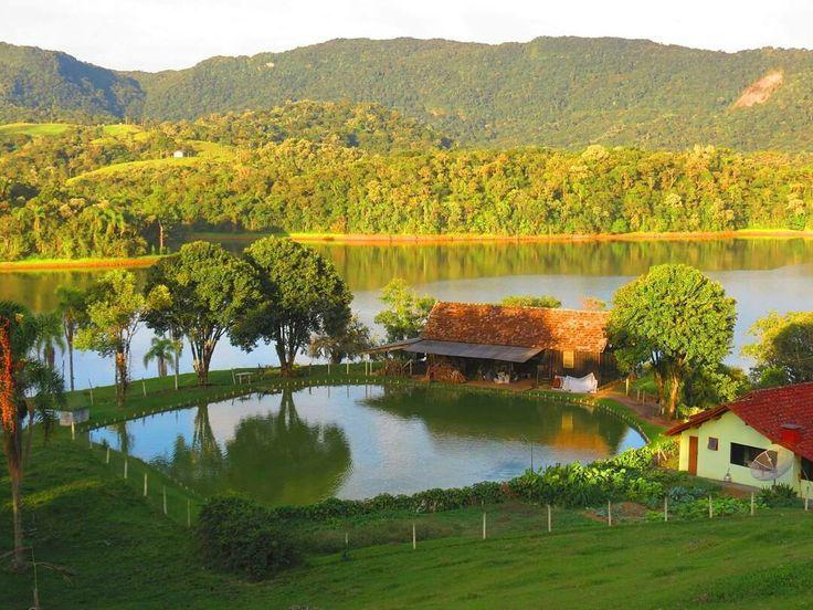 (¯`🌟´¯) Bom dia!   `•.¸.•´ ⁀⋱‿✫🌸🍃 A beira do Lago celebra-se o amanhecer... À beira do Lago sonhar faz parte da vida... Agradecendo ao Criador o dom de viver...  Pedindo proteção para mais um dia de lida.